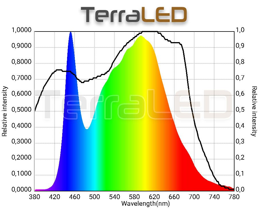 spectre ampoule horticole led terrarium