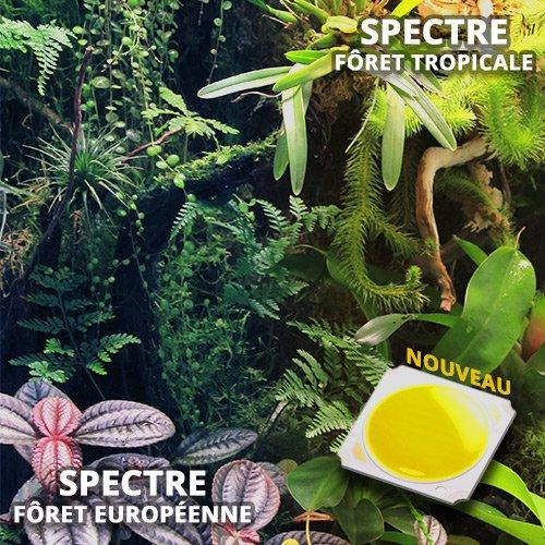 variation spectre led horticole terrarium paludarium
